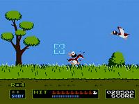 Duck Hunt Screen Shot